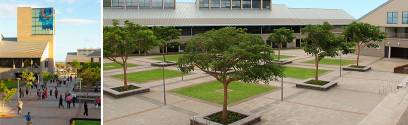 Images of the UH West Oahu main mall with the tower of the library building in the background and photograph of the UHWO courtyard.