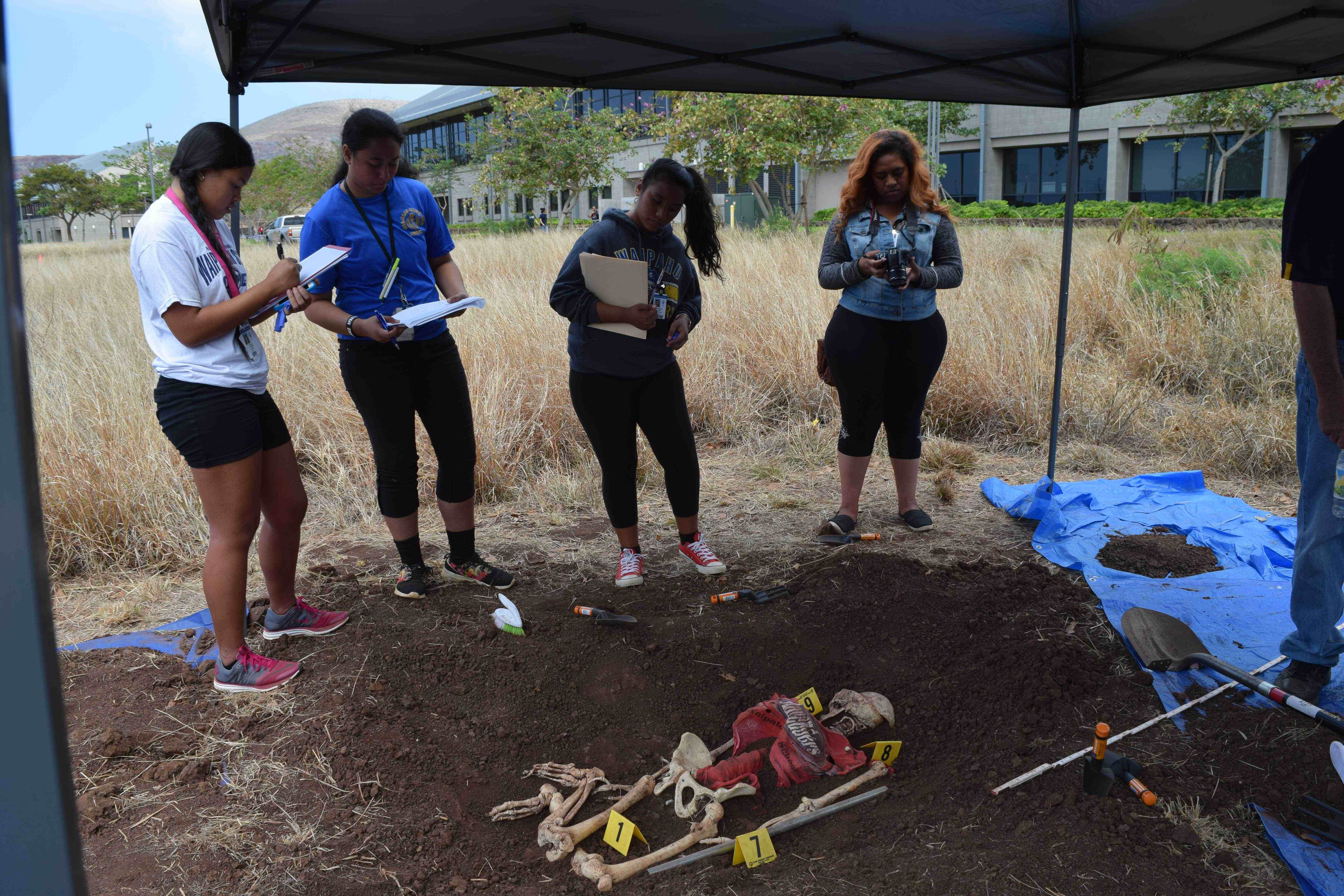 Students investigating bones at fake crime scene