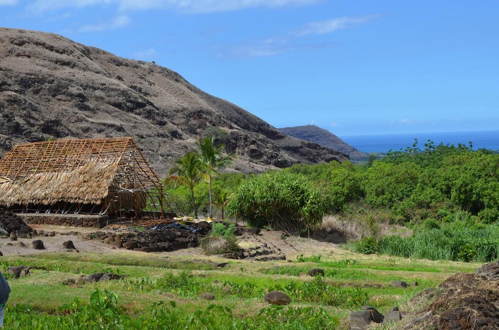 Kaʻala Farm