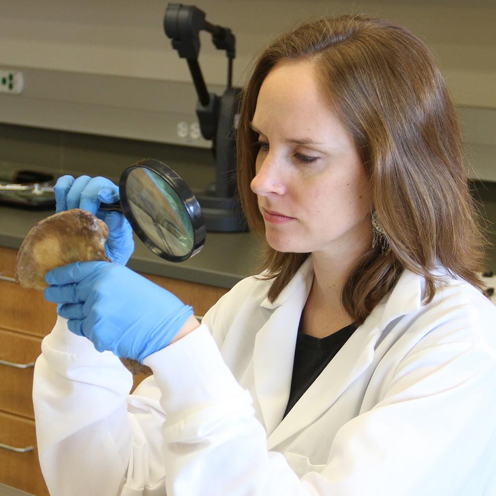 Dr. Jennifer Byrnes inspecting a hip bone.