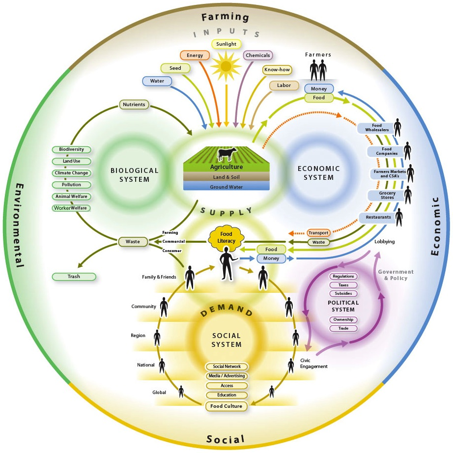 Food System graphic