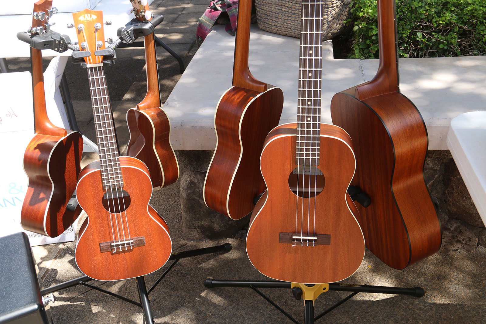A rack of guitars and ukulele.