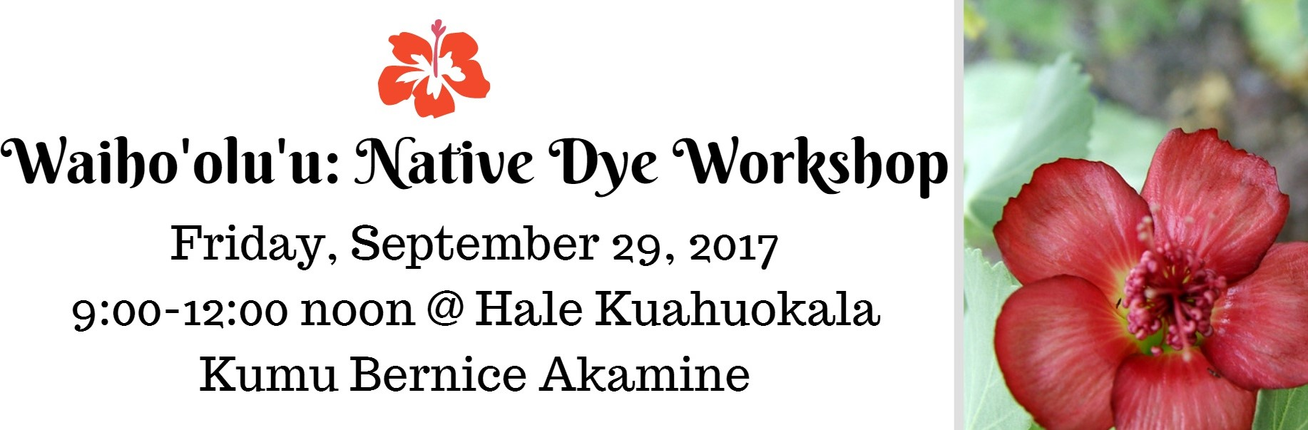 Fyler for Dye Workshop