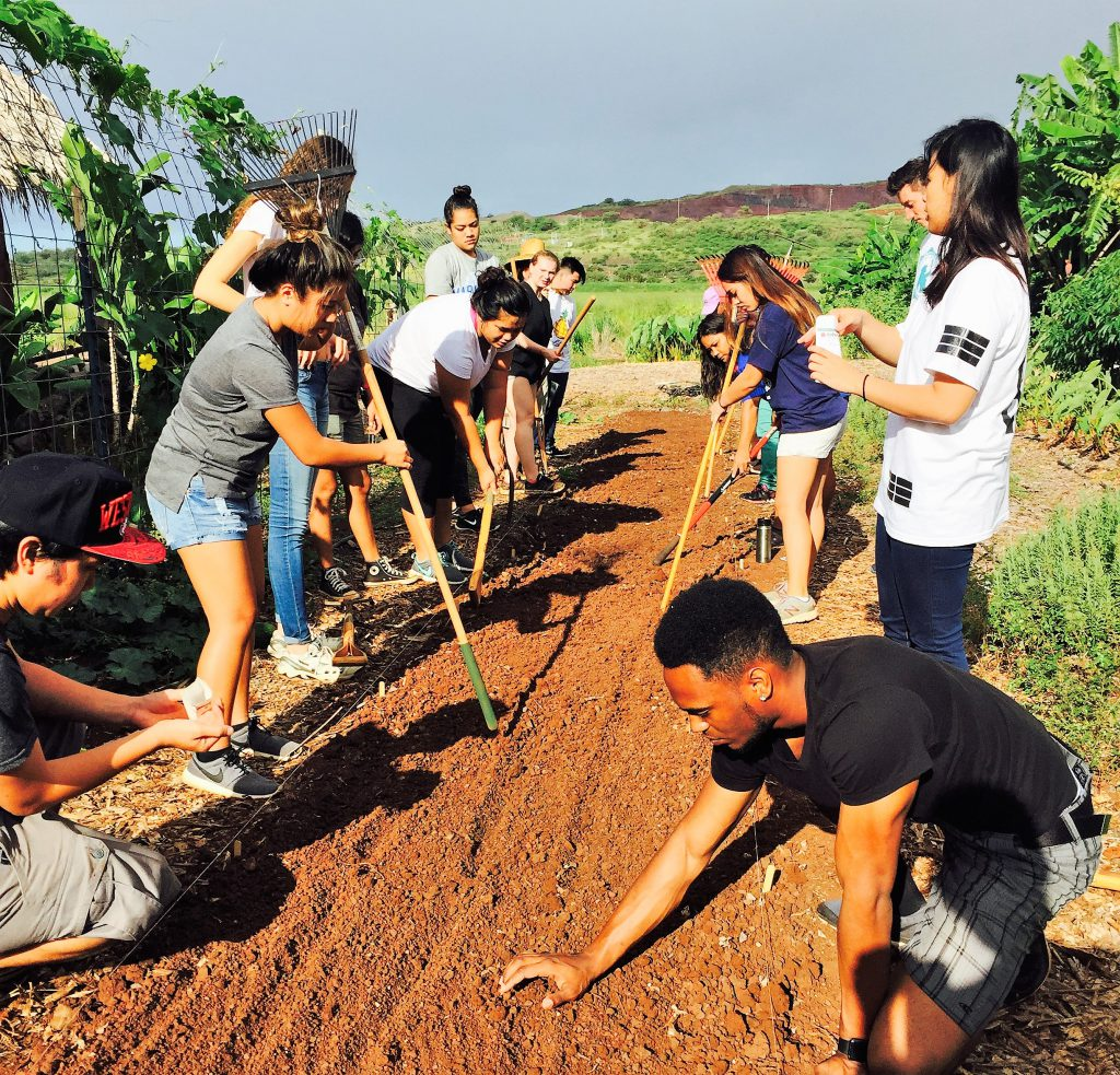 Photo of UHWO students in the Student Organic Garden