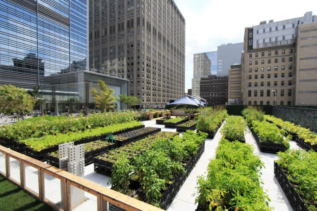 ORE Architecture designed a portable rooftop farm in Brooklyn N.Y. using re-purposed milk crates