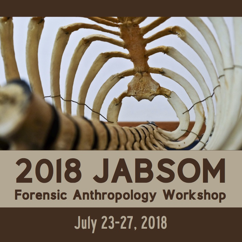 graphic of skeleton and words 2018 JABSOM Forensic Anthropology Workshop and dates