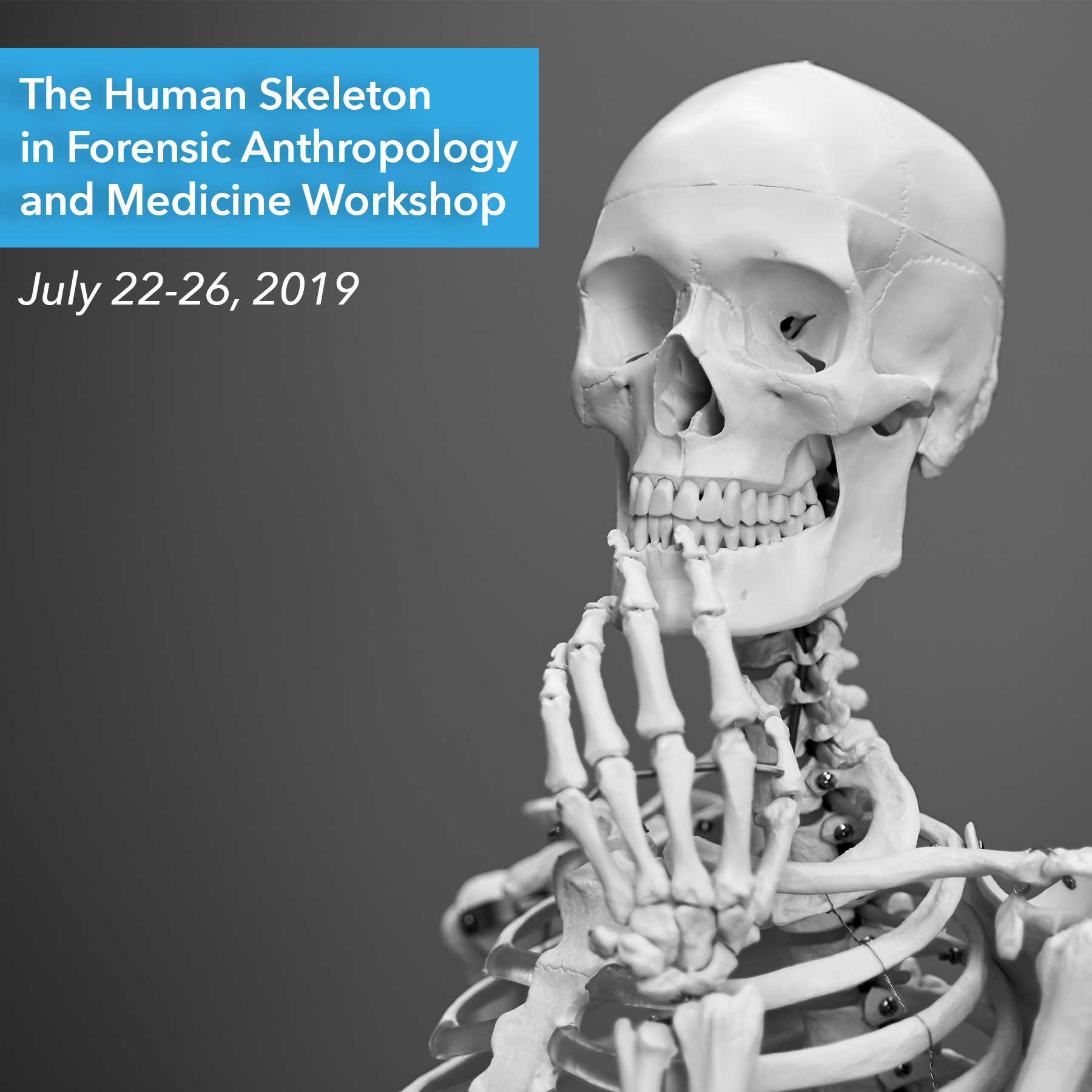 Photo of a Skeleton against a gray background with words the Human Skeleton in Forensic Anthropology and Medicine Workshop, July 22-26, 2019