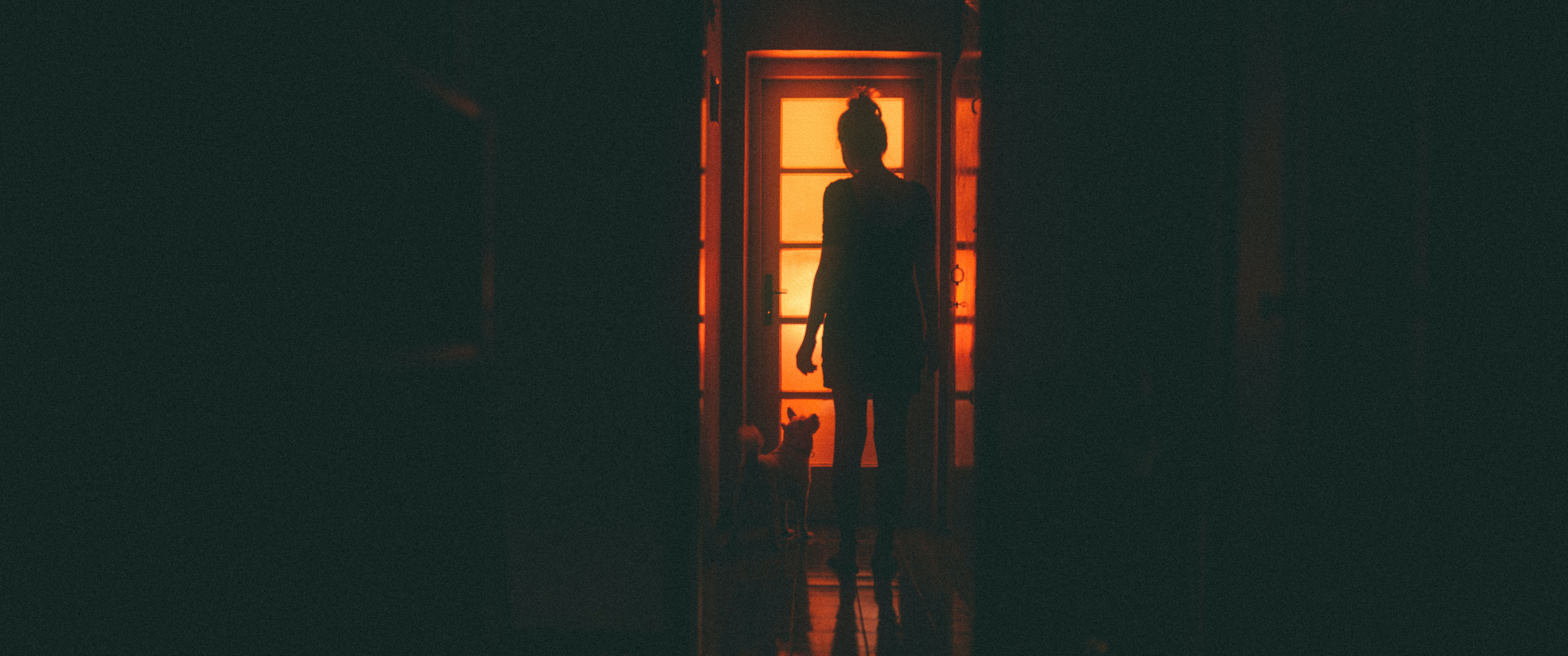 Silhouette of the back of a woman and dog looking outside a door.