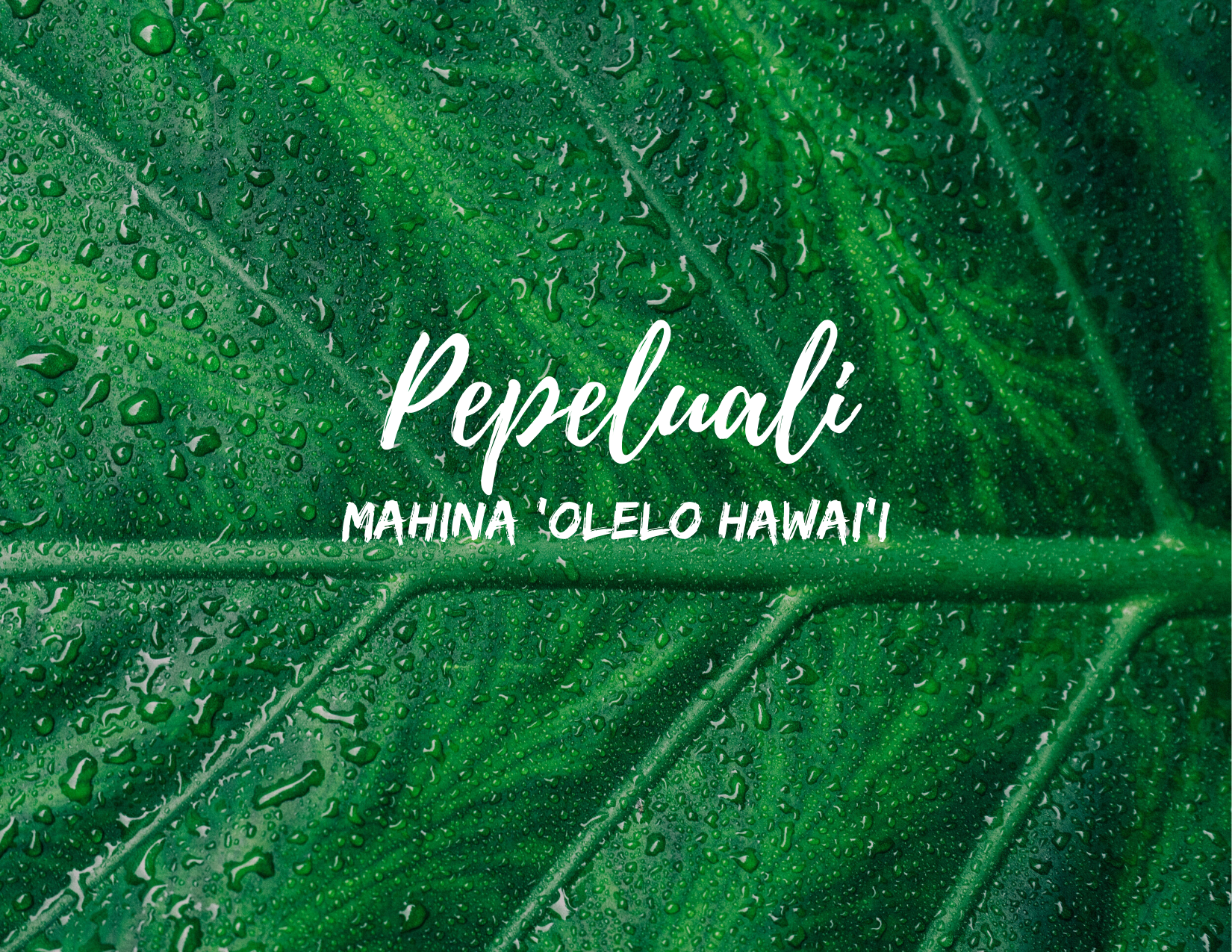 Image of a leaf with the words Pepeluali and Mahina Olelo Hawaii - February (Hawaiian Language Month)