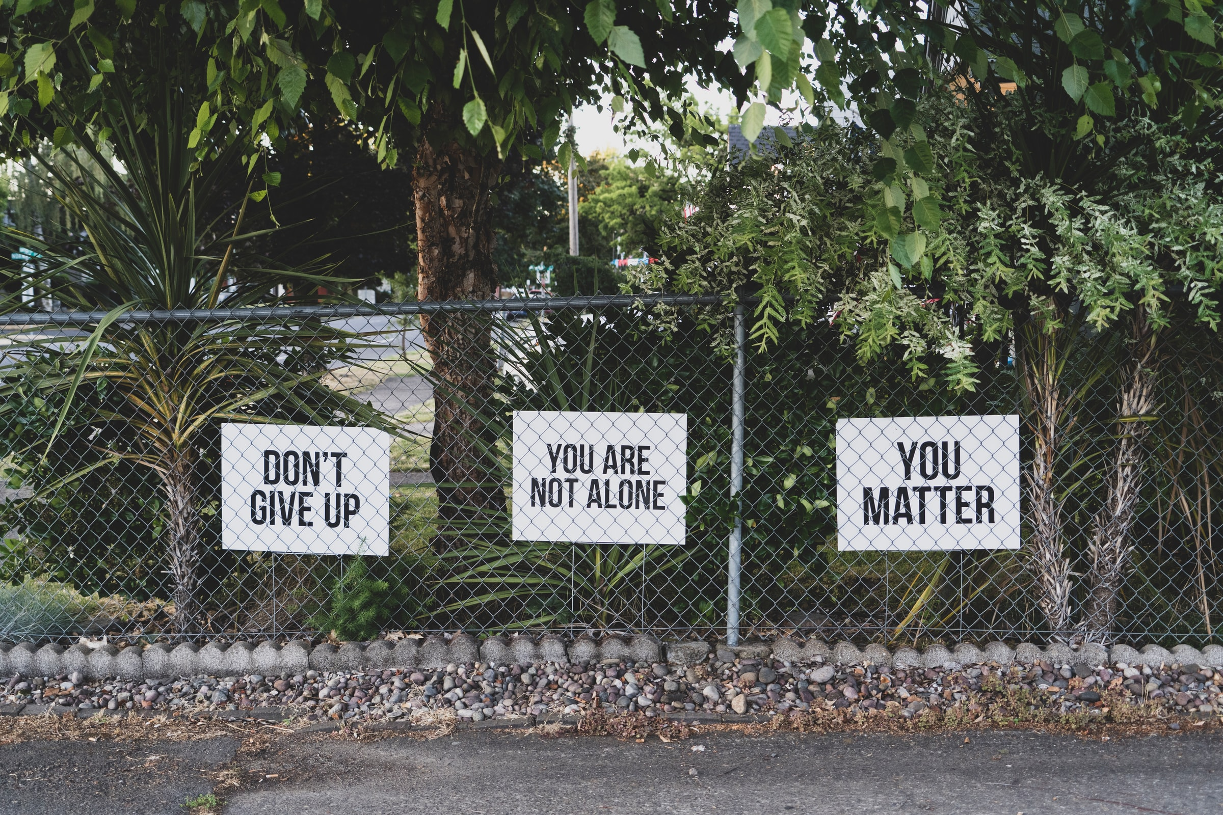 A picture of a fence with positive signs