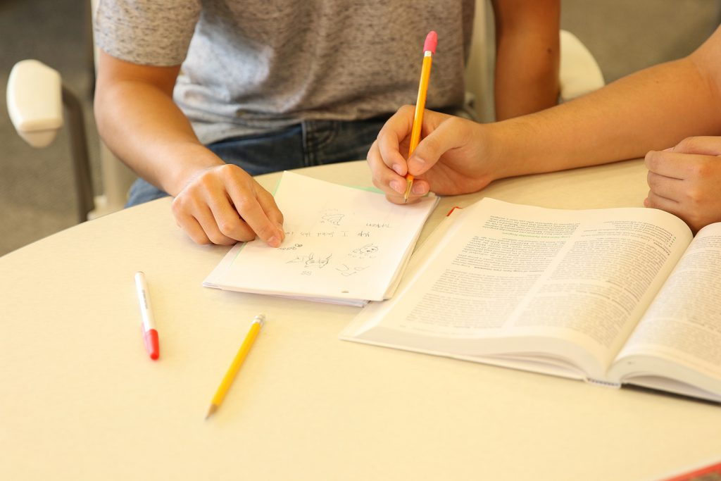 Table with study materials and a student and tutor studying