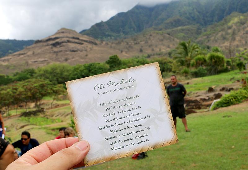 Close-up Of Oli Mahalo Words Card