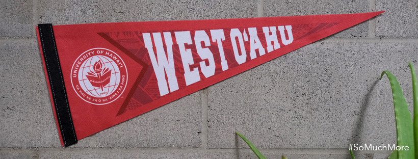 UH West Oahu Pennant Displayed On A Wall.