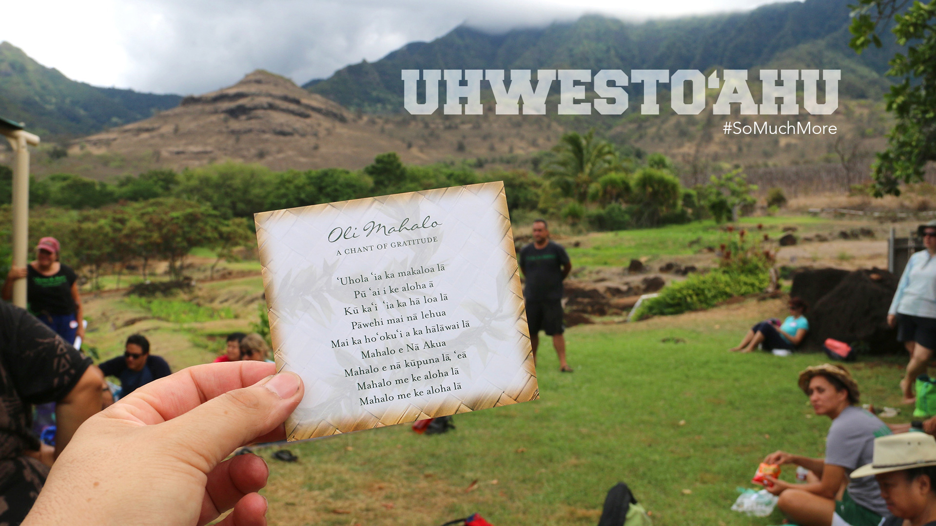 Close Up Of A Card With The Campus Oli Written On It While Standing In Waianae Valley.